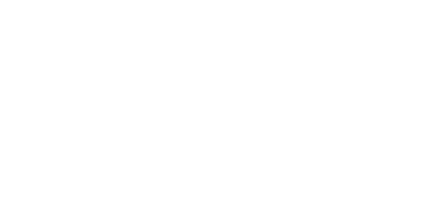 first-eagle-logo-white-trans-fdic.png